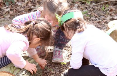 The Lea forest school children